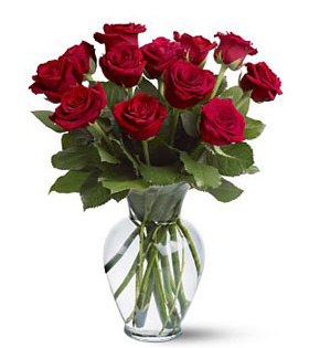 red roses in beautiful vase