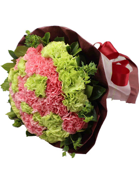 33 Green And Pink Carnations