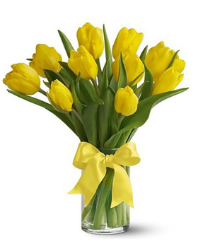 Yellow Tulip with Vase