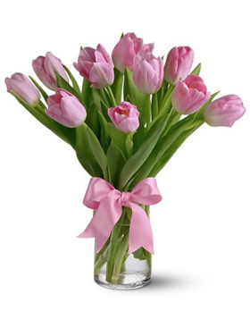 Pink Tulip with Vase