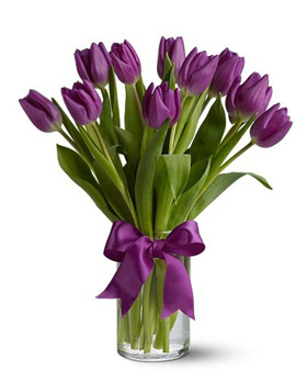 Purple Tulip with Vase