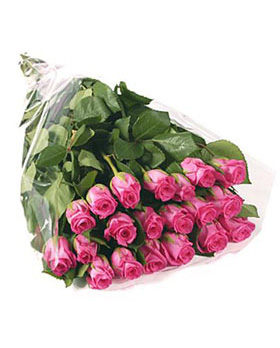 20 Pink Roses in Bouquet