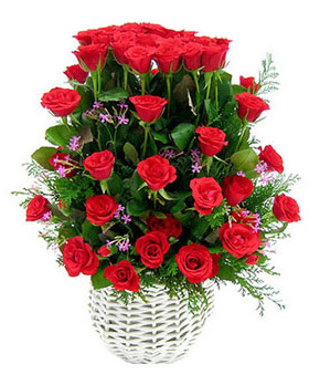 52 red roses basket